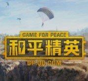 和平精英美化包