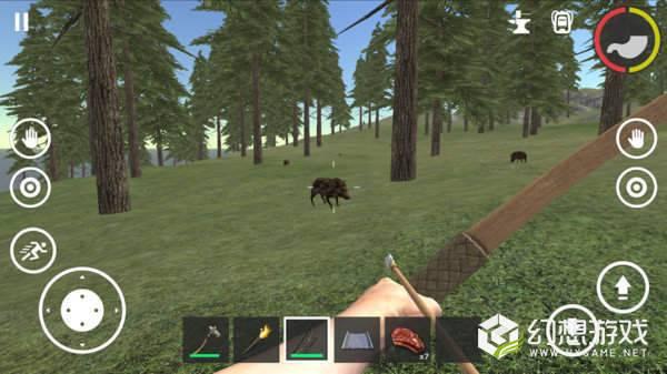 失落森林生存图2