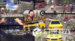 出租车驾驶模拟器3D图4