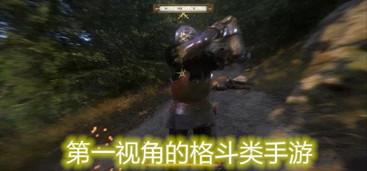 第一视角的格斗类手游