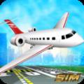 Simulated Aircraft Driving