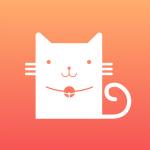 花栗鼠丁丁猫