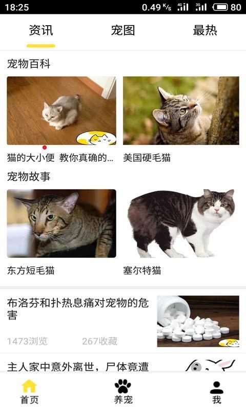 ET宠物图3