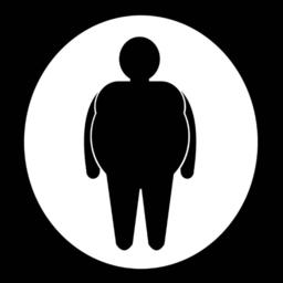 胖子行动健康瘦身