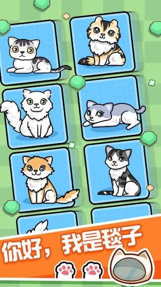 跑跑云养猫图1