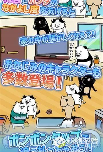 熊猫与狗狗的美好人生图2