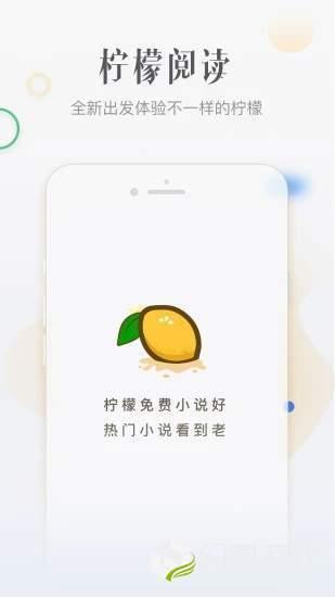 柠檬小说图4
