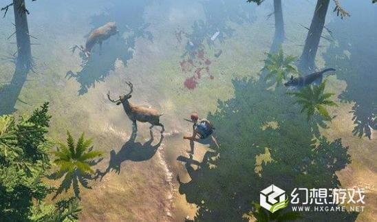荒地生存图1