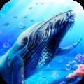 蓝鲸海洋生物模拟3D