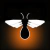 Swipe Fly