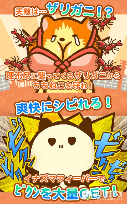 暴躁猫咪图3