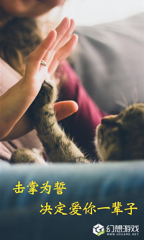 米族人猫交流器图2