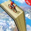大型坡道BMX赛车