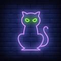 隐藏之猫  v1.0