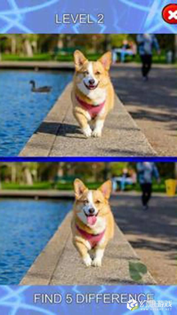 五个不同点小狗身上的斑点图1