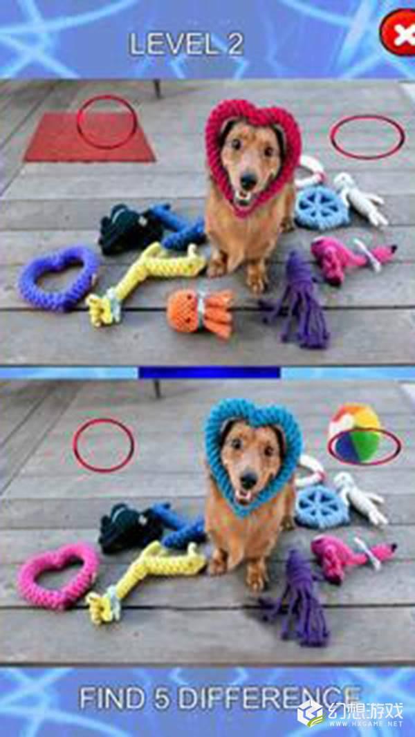 五个不同点小狗身上的斑点图3