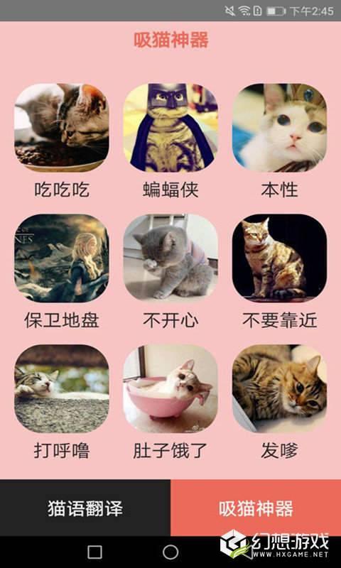 火猫猫语翻译器图1