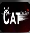 闪电猫区块链