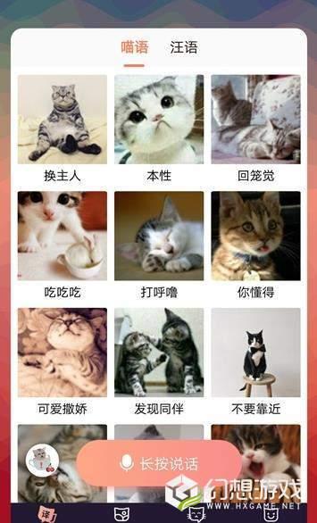 猫语互译图2
