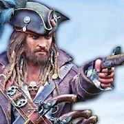 忍者海盗刺客英雄