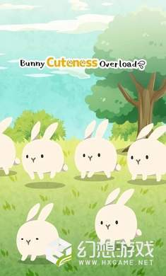 Rabbits Are So Cute图4