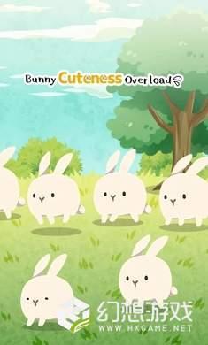 兔子未免也太可爱了图4