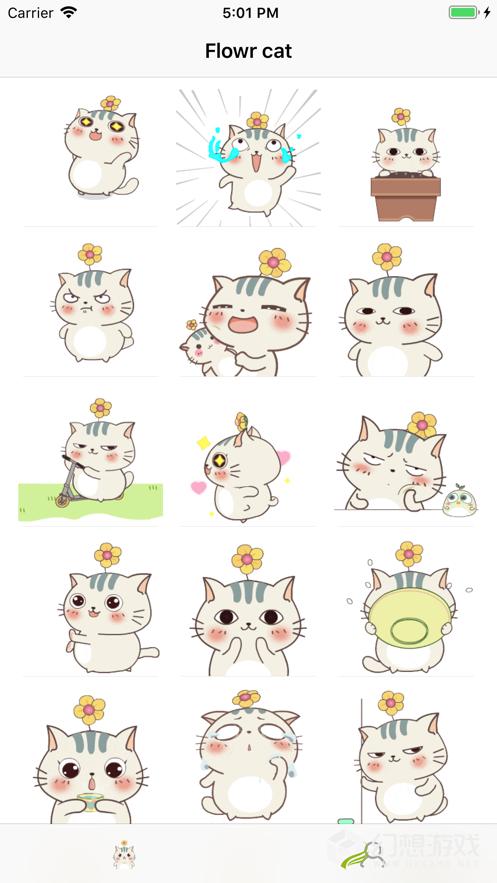 头顶花的猫图2