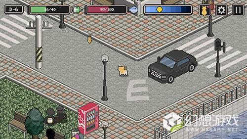 街头流浪猫冒险图2