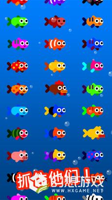 Fish & Trip图3