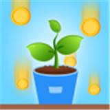 阳光森林  v1.0.2.2