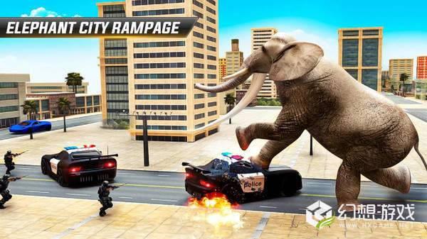 大象的复仇袭击图1