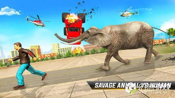 大象的复仇袭击图2