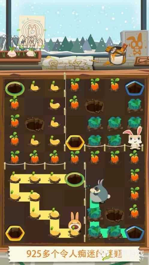 天天养兔子分红兔版图1
