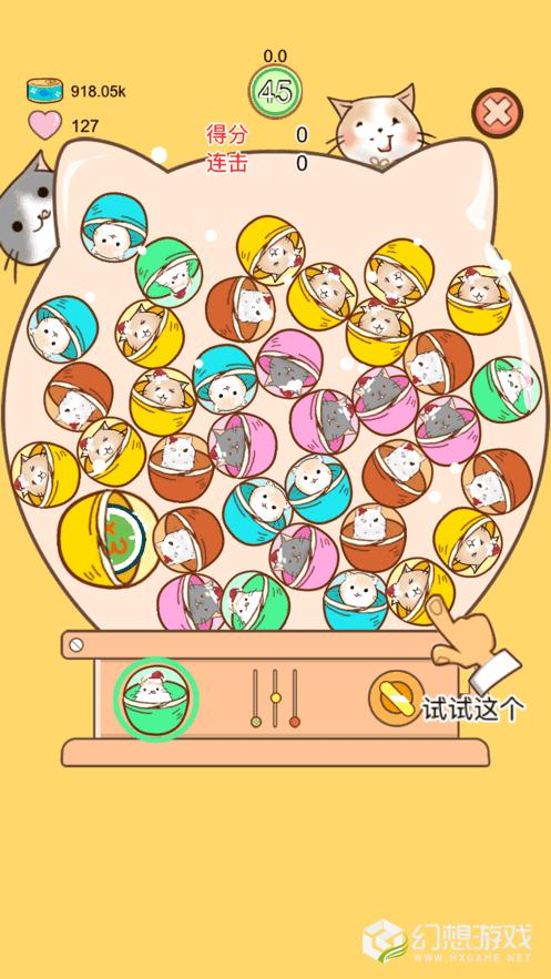 撸猫日记图4