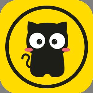 猫咪段子app