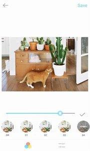 Tezza滤镜app安卓版图3