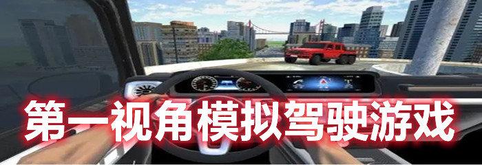 第一视角模拟驾驶游戏